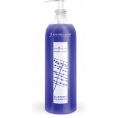Jean Paul Mynè Blueberry Shampoo - 250ml