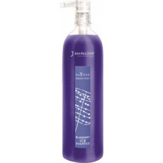 Jean Paul Mynè Blueberry ICE Shampoo