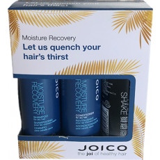 Joico Moisture Recovery Travel Size Set